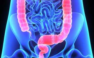 Толстая кишка — функции, лечение, заболевания