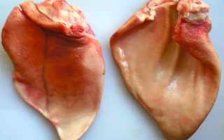 Свиные уши — приготовление, польза, калорийность