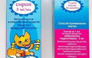 Бронхорус – инструкция, применение сиропа для детей, таблетки, отзывы