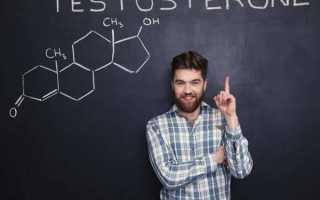 Норма тестостерона у мужчин: уровень гормона по возрасту, таблица